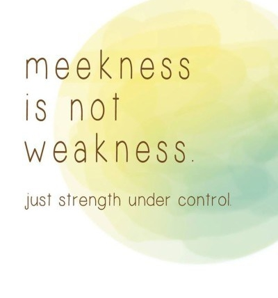 🔴☀MEEKNESS ☀🔴- PART 1